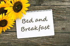 Bed and breakfast. Sunflower and card with lettering bed and breakfast Stock Images