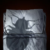 Bed Bug Fear Royalty Free Stock Photography