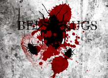 Bed Bug Industrial Control. Bloody squished bed bugs with finger print grunge background, bedbug control Royalty Free Stock Photo