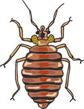 Bed bug vector clip-art illustration image Royalty Free Stock Photography
