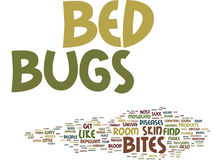 Bed Bugs Come From Word Cloud Concept Stock Photos