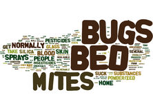 Bed Bugs Pictures Word Cloud Concept. Bed Bugs Pictures Text Background Word Cloud Concept royalty free stock images