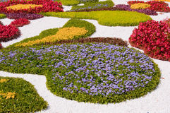 Bed in city park, multi-colored flowers Royalty Free Stock Image