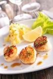 bed cucumber radish scallop seared 免版税库存图片