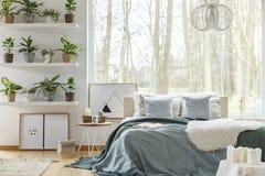 Bed en installaties in slaapkamer royalty-vrije stock afbeelding