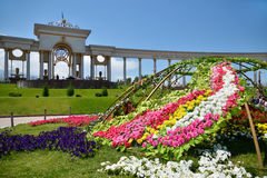 Bed of flowers in Almaty Royalty Free Stock Images