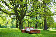 Bed in a forest Stock Photos