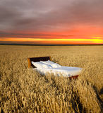 Bed in a grain field Stock Image
