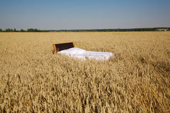 Bed in a grain field- concept of good sleep Royalty Free Stock Photo
