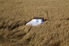 Bed in a grain field- concept of good sleep Royalty Free Stock Image