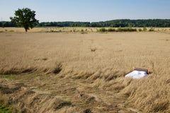 Bed in a grain field- concept of good sleep Stock Photos