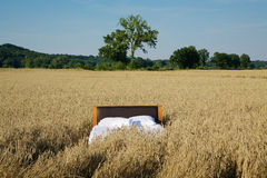 Bed in a grain field- concept of good sleep Stock Images