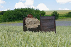 Bed in a grain field. Old bed in a grain field Royalty Free Stock Photo