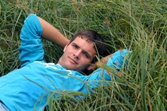 Bed of Grass Royalty Free Stock Photos