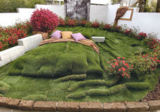 Bed of grass Royalty Free Stock Photo