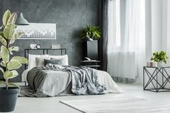 Bed with gray sheets. Double bed with gray sheets near the window in monochromatic bedroom interior Stock Photo