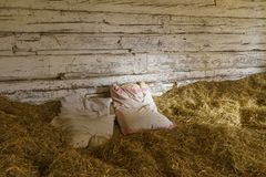 A bed in the hay stock image