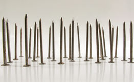 Bed of nails. Bed of carpentry nails standing upright on a white reflective background stock images