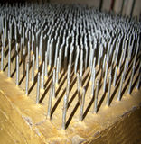 Bed Of Nails Royalty Free Stock Image