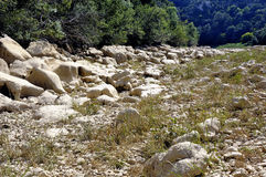 The bed of the river Gardon completely dry Royalty Free Stock Photo
