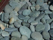 A bed of River Rocks Royalty Free Stock Photos