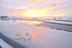 Bed seaside pool near sunset. Bed seaside pool near sunset in Thailand Stock Images