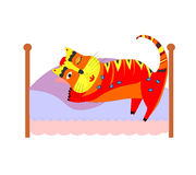 Bed with sleeping cat Royalty Free Stock Photo