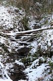Bed of a stream in the snow Stock Photo