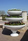 Bed in three tiers with blooming pansies. In the park Stock Photo