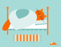 Bed time. Red cat sleeping in his bed Royalty Free Stock Images