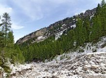 Bed van een bergbergstroom Stock Afbeeldingen