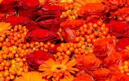 Bed van rozen, lijsterbes en gerberas Stock Afbeeldingen