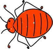Bedbug royalty free illustration