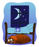 Bedbug under your bed Stock Photo