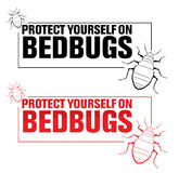 Bedbugs Stock Photo