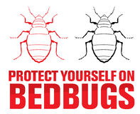 Bedbugs. Protect yourself on bedbugs Royalty Free Stock Images