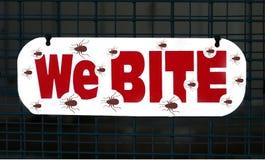 Bedbugs Bite royalty free stock photography