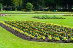 Beddegoedinstallaties in een bloembed, de vroege zomer, het UK Stock Foto's