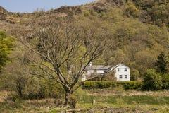 Beddgelert, Galles, Regno Unito - una casa bianca su una collina, tempo di molla Fotografia Stock