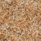 Bedding for cattle texture. Natural dry straw seamless pattern Royalty Free Stock Image