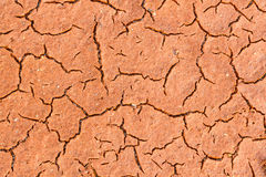 Bedding of red, moist and cracked clay. Royalty Free Stock Images