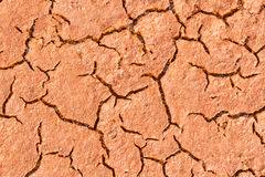 Bedding of red, moist and cracked clay. Stock Photos