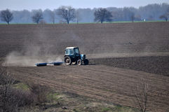 Bedding spring crops_5. Track rollers with tractor prepares soil for planting spring crops Stock Photo