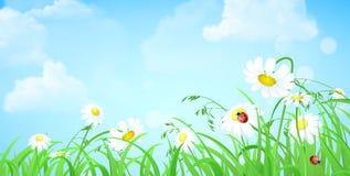 Bedecken Sie Blume, Himmel, flacher Hintergrund des Wolkenvektors mit Gras Lizenzfreie Stockfotos