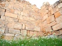 Bedecken Sie Blumen und alte Wand bei Pamukkale, die Türkei mit Gras Stockbild