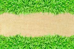 Bedecken Sie Feld auf Leinwandbeschaffenheitshintergrund mit Gras Lizenzfreie Stockfotografie