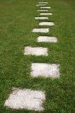 Bedecken Sie Fußweg mit Gras Lizenzfreie Stockfotografie