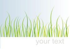Bedecken Sie Karte mit Gras Stockfoto