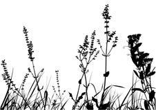 Bedecken Sie Schattenbild mit Gras Stockfotos