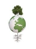 Bedecken Sie trockene und grüne Baumökologie 3d CG mit Erde lizenzfreie abbildung